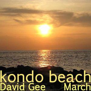 Kondo Beach March 2012