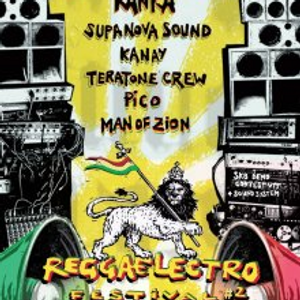 A little Zest of Bass recorded live by Man of Zion at Reggea Electro Festival 2 by Le Citron Vert