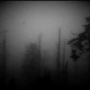 Falling (Memory & Loss mix)