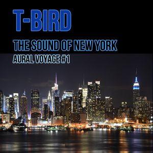The Sound of New York - Aural Voyage #1