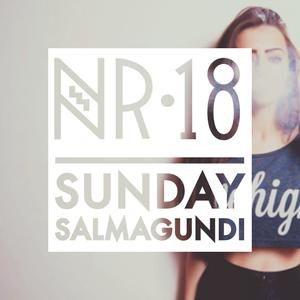 Sunday Salmagundi Nr.18 - Mixed by Handbandits (Montero & Jin Chillah)