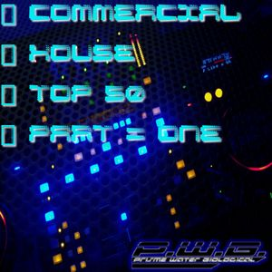 DJ P.W.B. - Commercial House TOP 50 Mix (Part One) [04/07/2011]