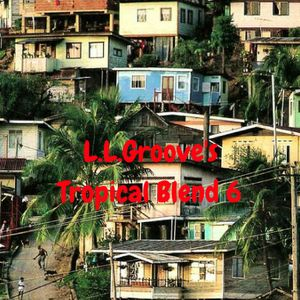 Tropical Blend 6