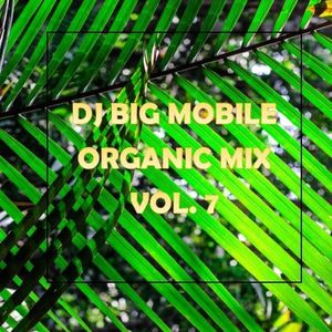 DJ BIG Mobile Organic Mix Vol. 7