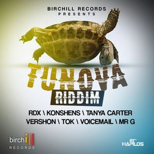 TUN OVA RIDDIM (DJ DZL EXTENDED MIX)