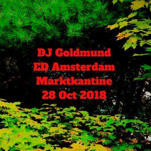 DJ Goldmund Ecstatic Dance Amsterdam 28 Oct 2018