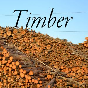 Timber! Show #168 August 8, 2019