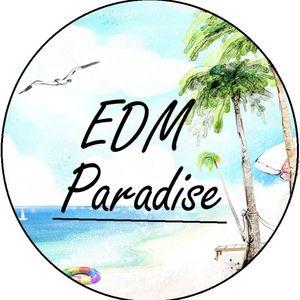 Amomenforever presents EDM Paradise 1