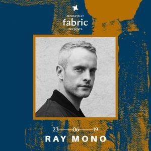 Ray Mono Sundays at fabric x Steppin' Motion Promo Mix