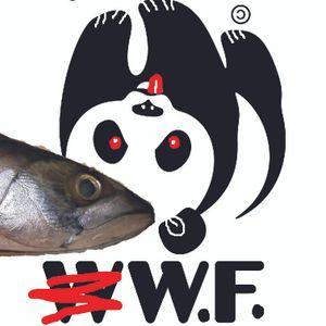 fisheadsfast
