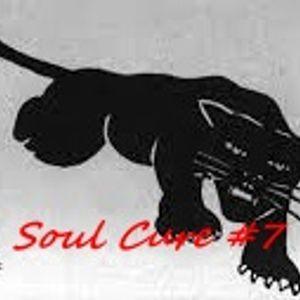 Soul Cure #7