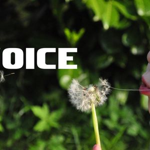 The Practice of Finding Your Voice