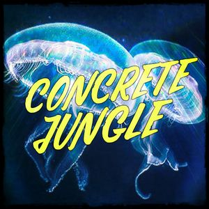 Concrete Jungle - 2017-06-15 - Dj Stalefish - New Hyroglifics, Dub Phizix, Lynx, Dead Man's Chest