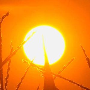 MP7 - Falling in hot Love 2015
