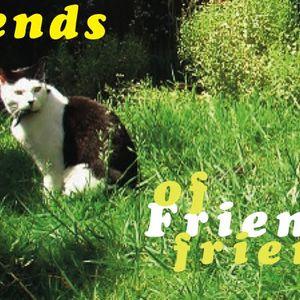 Friends of Friends's Friends