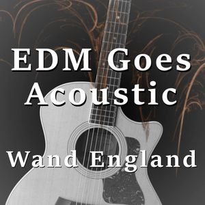 EDM Goes Acoustic
