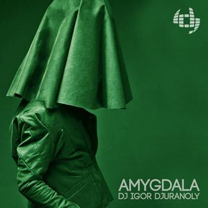 Dj Igor Djuranoly - Amygdala