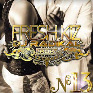 Mixtape DJ RADIKAL Paris FRESH KIZ N°13