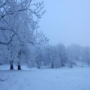 Januar Mix 2012 Part 2 (Cold and bad weather)