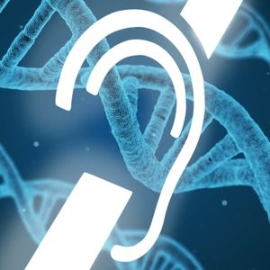 LMTF Episode 20 (Season 2): Genetic Engineering and Deafness