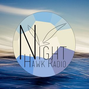 Night Hawk Radio Yearmix 2013