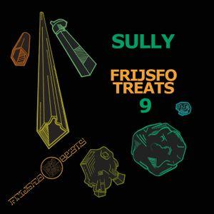 Sully - Frijsfo Treats 9