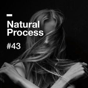 Natural Process #43