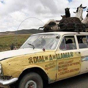 Dial Llama For Funk Show April