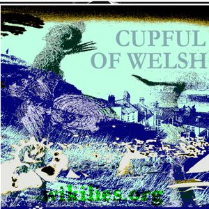 A CUP OF WELSH MADNESS johnny solstice
