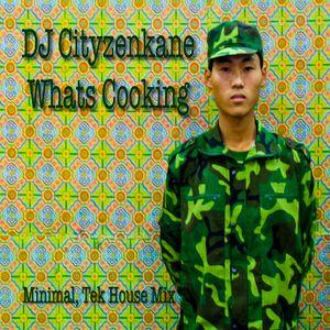 DJ Cityzenkane. Whats cooking. Mix