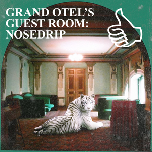 GRAND OTEL'S GUEST ROOM: NOSEDRIP