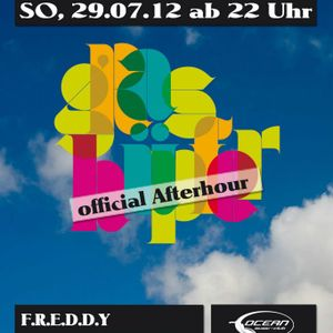 F.R.E.D.D.Y b2b BREZEL&LAUGE @ Grashüpfer Afterparty (30|07|2012)