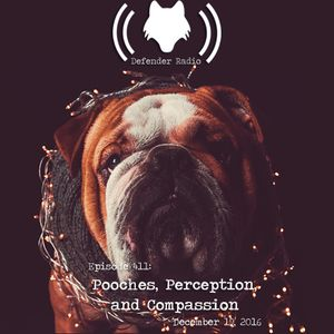 Episode 411: Pooches, Perception, and Compassion