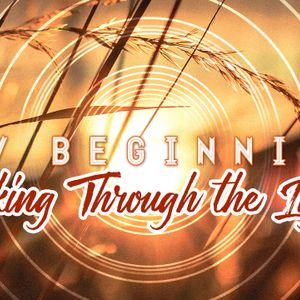 New Beginnings: Looking Through the Light