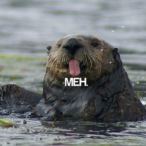 Mediocre Parent Show - Otter Chaos