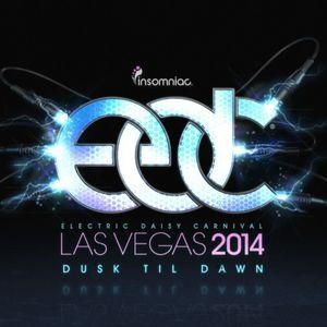 Flosstradamus - live at EDC Las Vegas 2014, CosmicMeadow - 20-Jun-2014