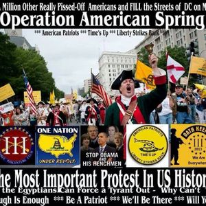 Joe Newby - (Interview Only) with Col. Riley On Operation American Spring 2.19.2014
