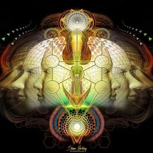 Welcome to my Frequency