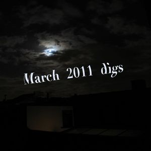 small march 2011 digs