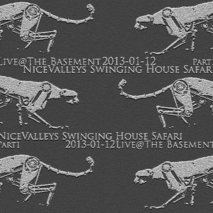 NiceValley´s Swinging House Safari Live@TheBasement 2013-01-12