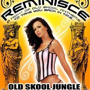 DJ Vengeance - Boogieman, MC DNA & Force Live @ Reminisce [Classic Jungle/DNB set]