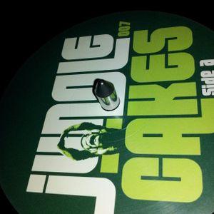 Ragga Jungle / Drum and Bass Mix - Feb 2012