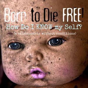 B2DF #13 How Do I KNOW my Self?