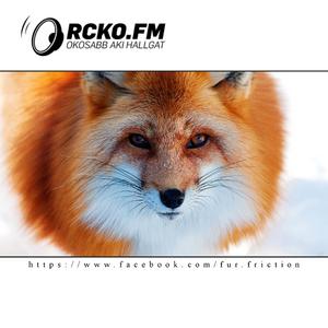 FUR FRICTION RADIO SHOW 001 - Inzert LIVE