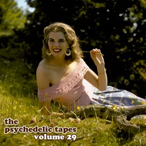 The Psychedelic Tapes - Volume 29