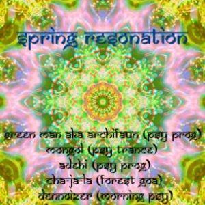 Den Noiser - Spring Resonation