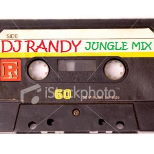 DJ Randy in the Jungle