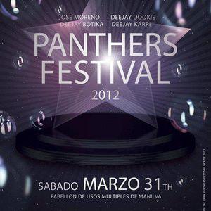 "MARIO KERB @ DJ SET "" PANTHERS FESTIVAL """