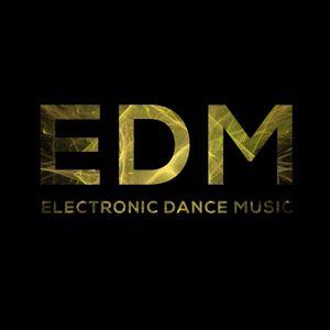 Robert Kacir - EDM Festival  2016  /2/