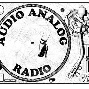 Audio Analog Radio Program 4-19-17: The Hip hip luau episode.